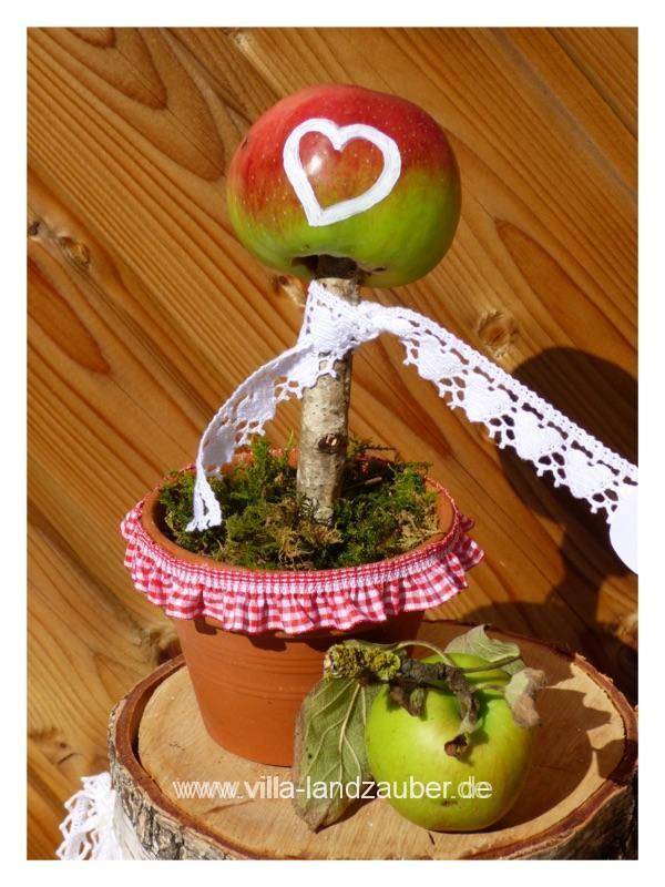 Apfelzeit6