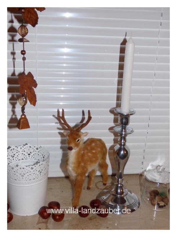 bambi39