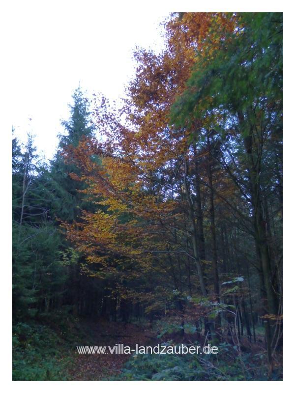 Wald71