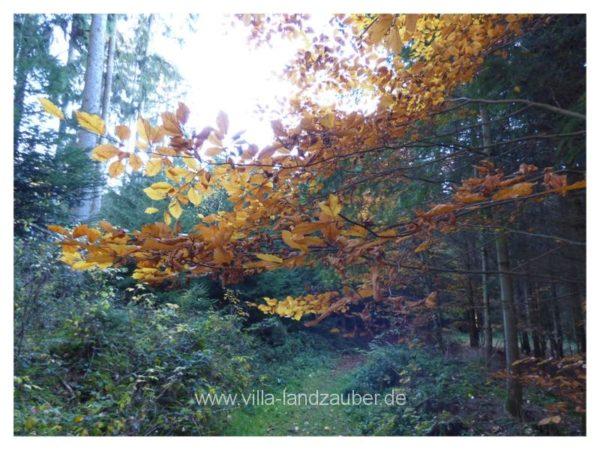 Wald78