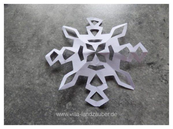 Schnee22