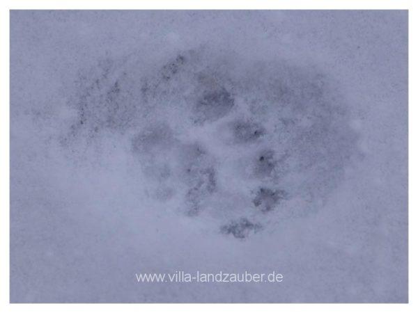 Winterzauber44