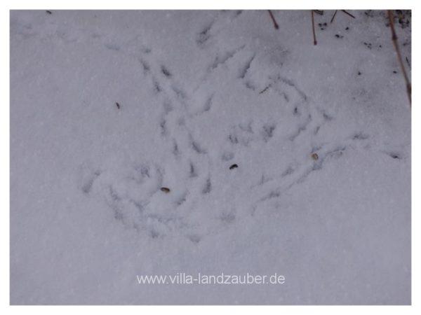 Winterzauber45