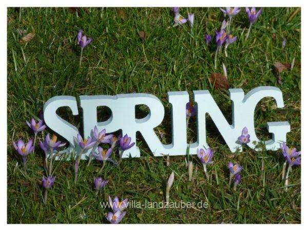 Spring53