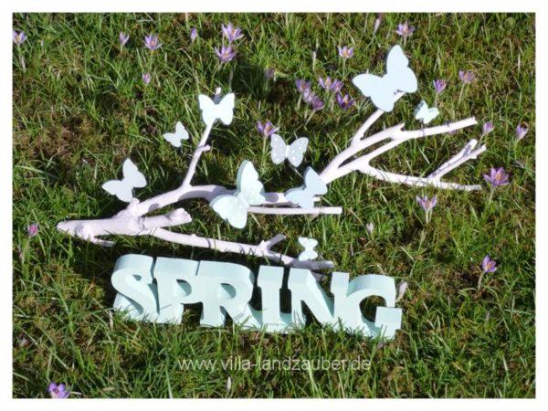 Spring62