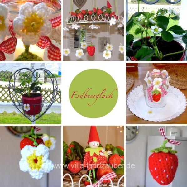 Erdbeer20