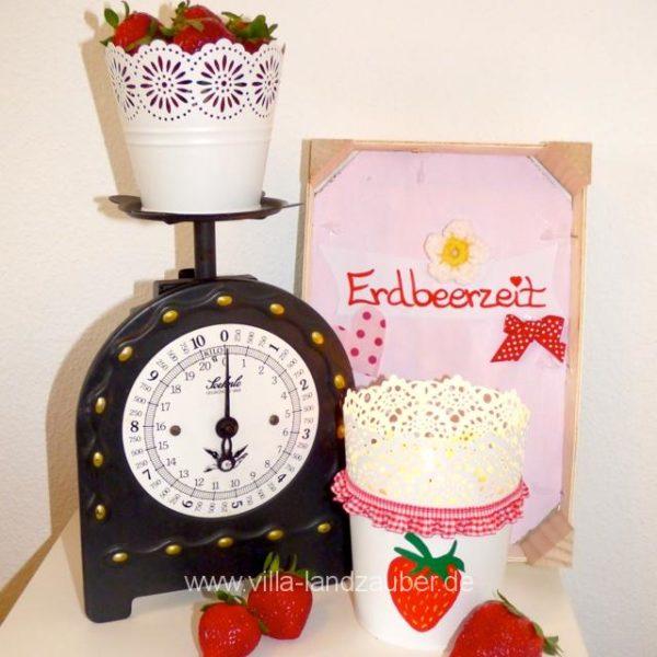 Erdbeere26